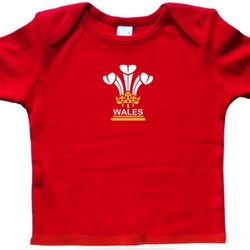 3 Feathers Wales Baby T shirt