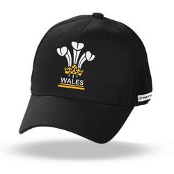 welsh Caps at Brinley Williams