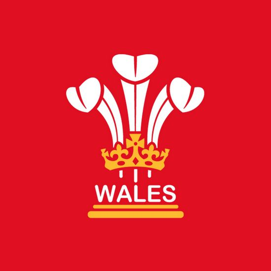 3 Feathers Wales