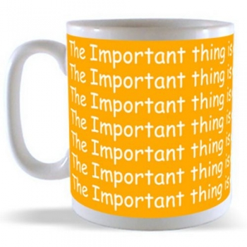 The Important thing is not to stop Questioning Mug