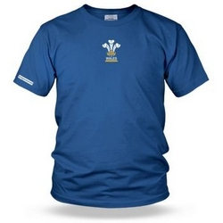 3 Feathers Rugby kids t shirt - Wales